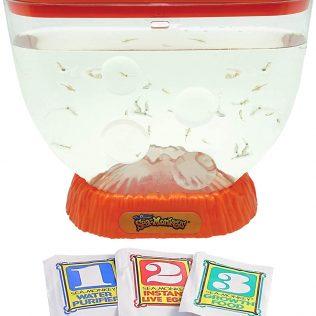 The Original Sea-Monkeys Ocean Volcano Orange